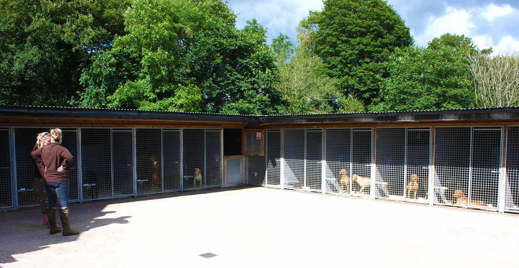 Dog Breeders Shropshire